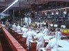 Castevetro-  Beef  processing